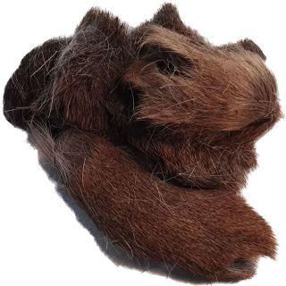 Hirschkopfhaut mit Fell