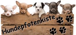 Hundedecken | Schnüffelwiesen | Schnüffeldecken | Schnüffelteppiche